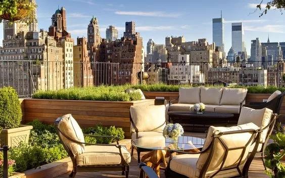 城市屋顶绿化工程...