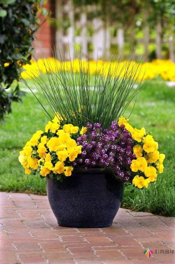 庭院设计之花园改造设计,五种方法手把手教你打造最美花