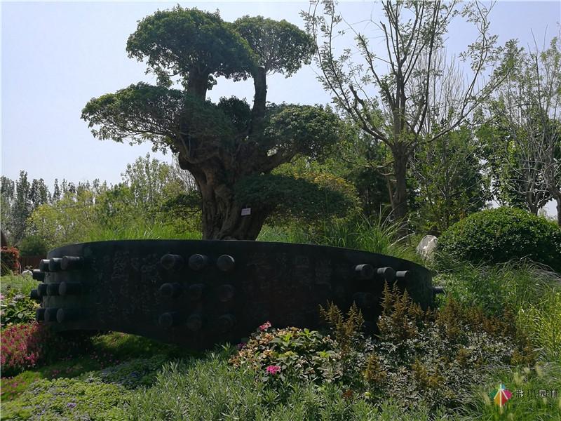 湖北风情花境园艺设计