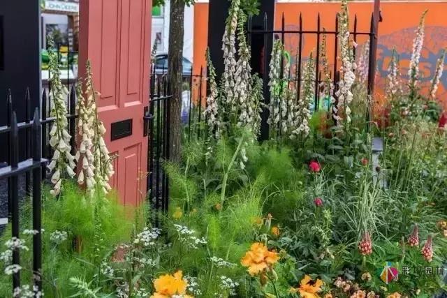 花园庭院设计中植物该怎么设计?