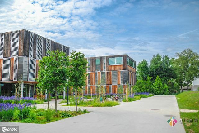 校园景观设计中的花境如何设计?