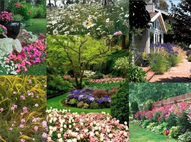 花园设计中该如何营造美丽的花境