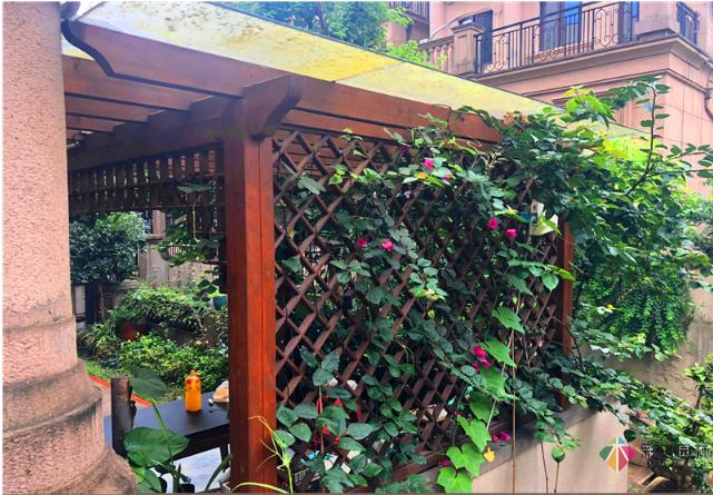 庭院花架的类型及设计要点
